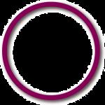 Holodigit Web Design logo Circle transparent